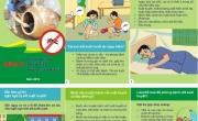 Những Điều Cần Biết Để Phòng Chống Bệnh Sốt Xuất Huyết