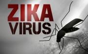 Bệnh Do Virut Zika