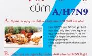 Chủ Động Phòng, Chống Cúm A/H7N9